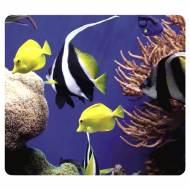 Fellowes 5909301. Alfombrilla reciclada acuario