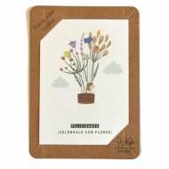 SHEEDO Tarjeta plantable - Felicidades ¡Celébralo con flores!
