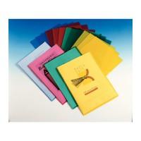 Esselte 54832. Pack 100 dossier polipropileno transparente con uñero. A4